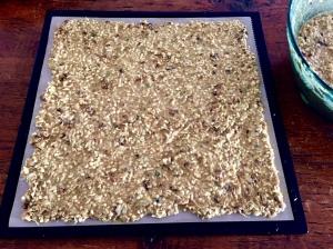 raw mix goes onto Dehydrator sheet