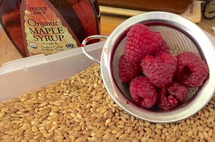 rasberry oats